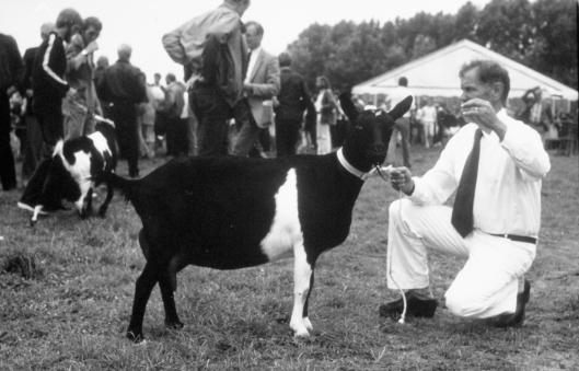 1982 Dronten; Kampioen Sina 25-H.