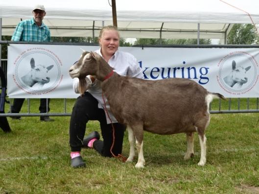 16 augustus 2014 Hoornaar; Dagkampioen geiten Marissa.