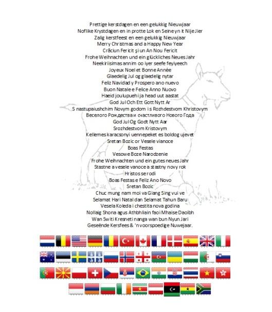 2014-2015 vlaggen en tekst1