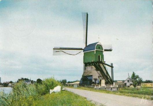 Wipwatermolen den Bonk in polder Lakerveld bij Meerkerk; met geit.