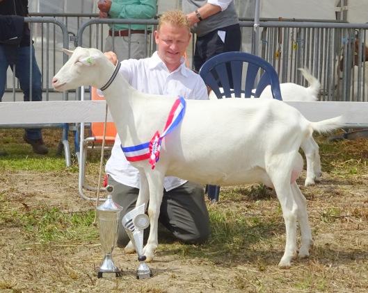 2015 DES Hagestein; algemeen kampioen geiten Anne van P. Schoenmakers.