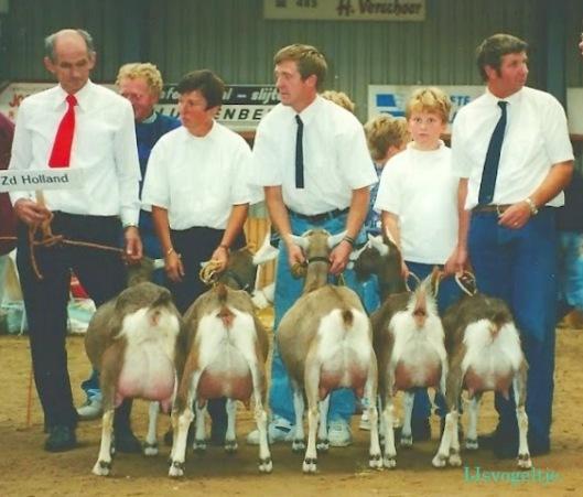 Nat. CW-keuring Luttenberg 1995; Prov. groep 1 en 2 jaar 1B Zuid-Holland.