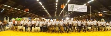 2016 Zwolle; de kampioenen en reserve kampioenen.