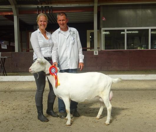 DSC08115.JPG algemeen kampioen geiten. Moniek 56.