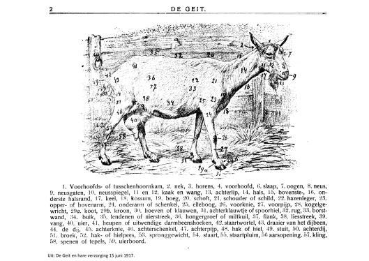 weblog; De geit 15 juni 1917