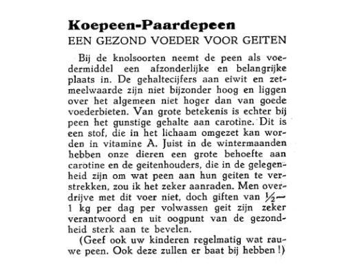 weblog Koepeen. januari 1957