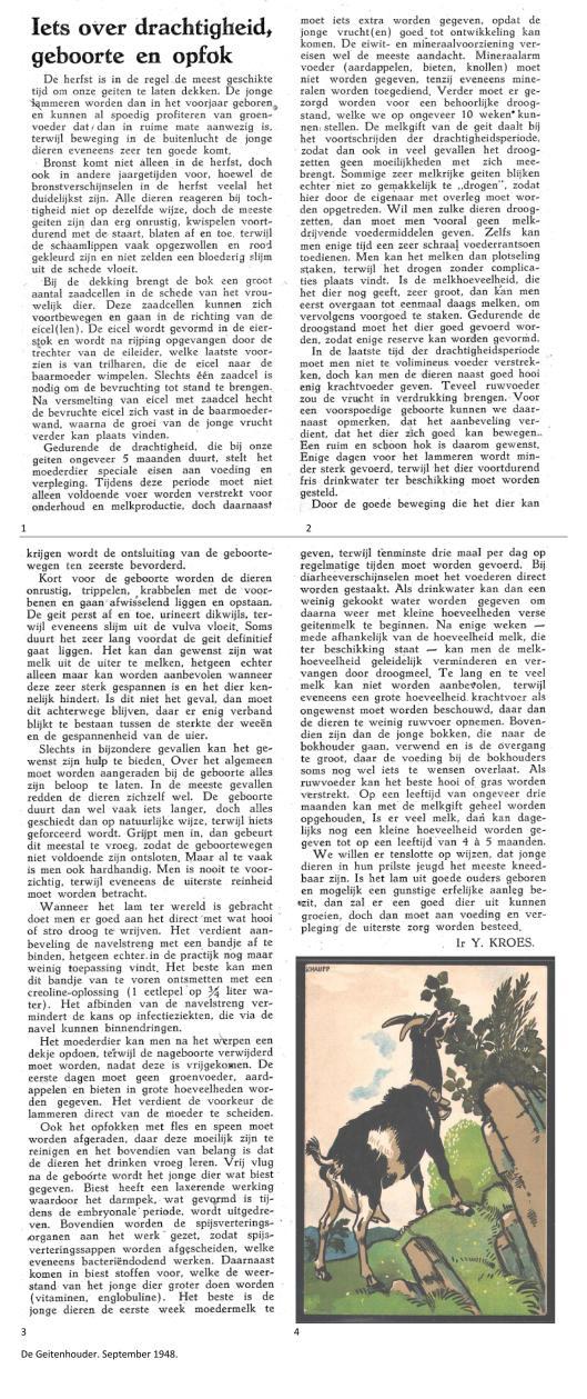 Weblog de Geitenhouder september 1948 iets over drachtigheid