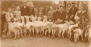 wilhelminasluis geiten