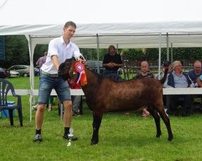 DSC06040 (1).JPG Ambrosius van Oudwoude alg. kampioen