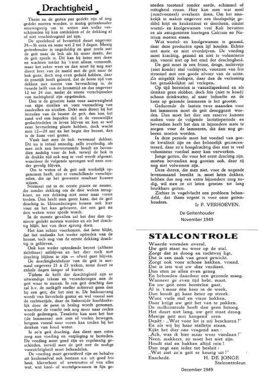 De Geitenhouder November 1949; drachtigheid