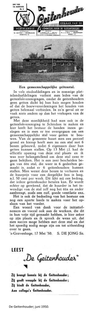 Weblog;_De_Geitenhouder;_gemeenschappelijke_stal_in_Schiedam_juni_1950[1]